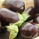eggplant-237448_1920